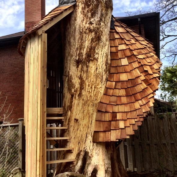 treehouse-testimonial-ii